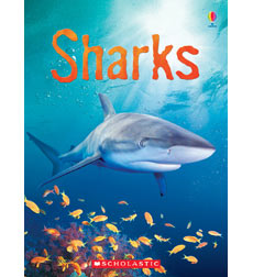 Usborne Books: Sharks
