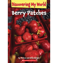 Discovering My World: In the Garden: Berry Patches