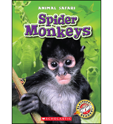 Spider Monkeys 9780531224779