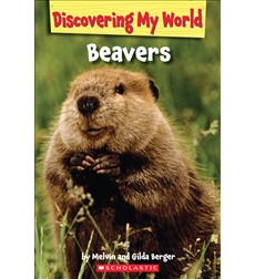 Discovering My World: Forest Animals: Beavers