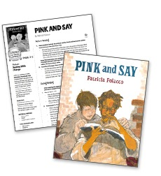 Pink and Say - Literacy Fun Pack Express