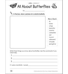 All About Butterflies: Draw and Write Prompt