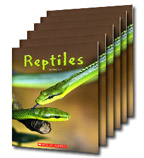 Guided Reading Set: Level B – Reptiles