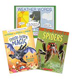 Guided Reading Level Pack II—R
