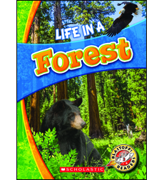 Life in a Forest 9780531223888