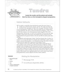 Tundra (Hemisphere-Shaped Manipulative): Animal Habitats