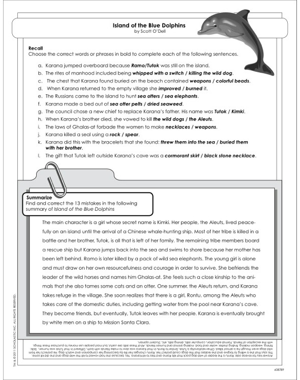 Island of the Blue Dolphins - Activity Sheet by Scott O'Dell