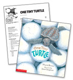 One Tiny Turtle – Literacy Express Pack