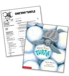 One Tiny Turtle? - Literacy Fun Pack Express