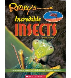 Ripley's: Incredible Insects
