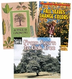 Scholastic Trio Individual Theme Unit Set 2, Science - Plants, Grades 2-3