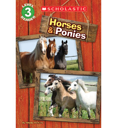 Scholastic Reader!® Level 3: Horses & Ponies
